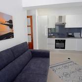 Apart 1 Living Room & Kitchen.jpg