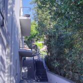 Balconies_foliage.jpg