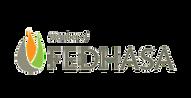 FEDHASA logo n.png