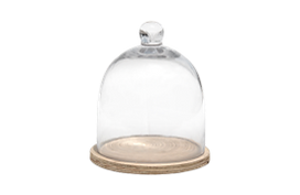 glass domes for furniture rental