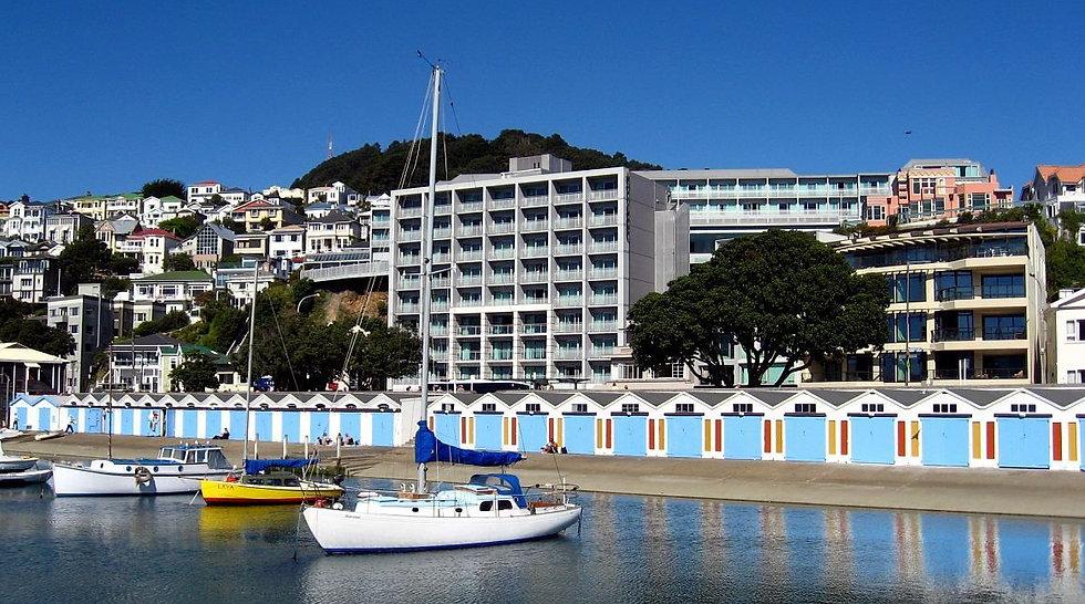 Internship in Wellington New Zealand