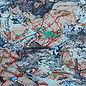 Struss-Taming-the-Earth.jpg
