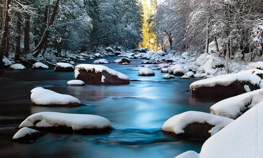 snow scene.jpeg