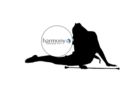 Harmony Fitness, www.larasolazzo.ch, twirling