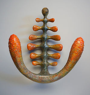 Spinal Shape.jpg