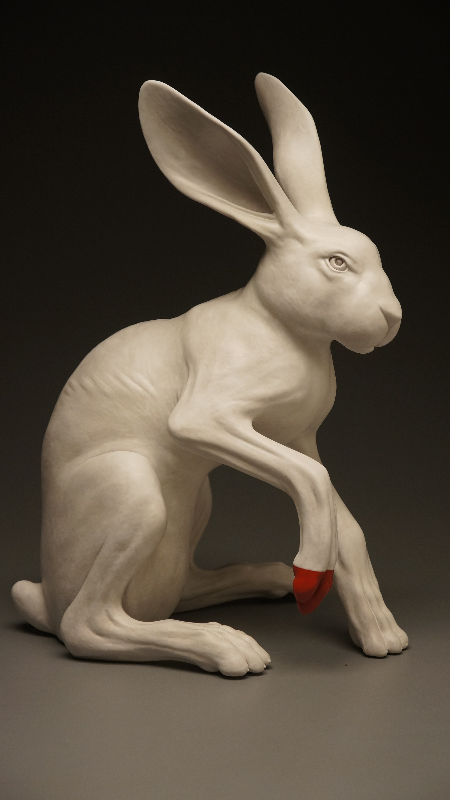 White Hare Red Toe