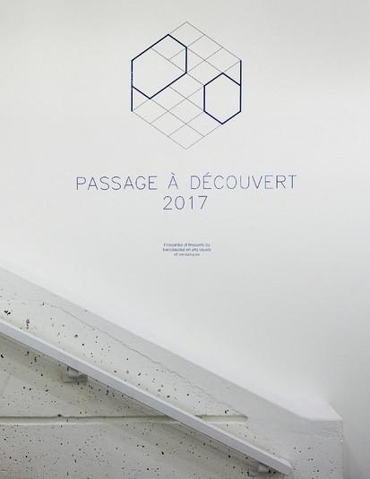 passage-a-decouvert-2017-47.jpg