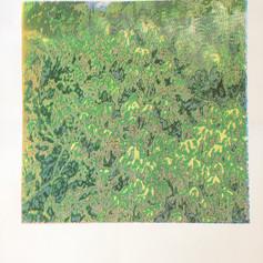 2. Travail de motifs sérigraphiés pour le sol de la forêt
