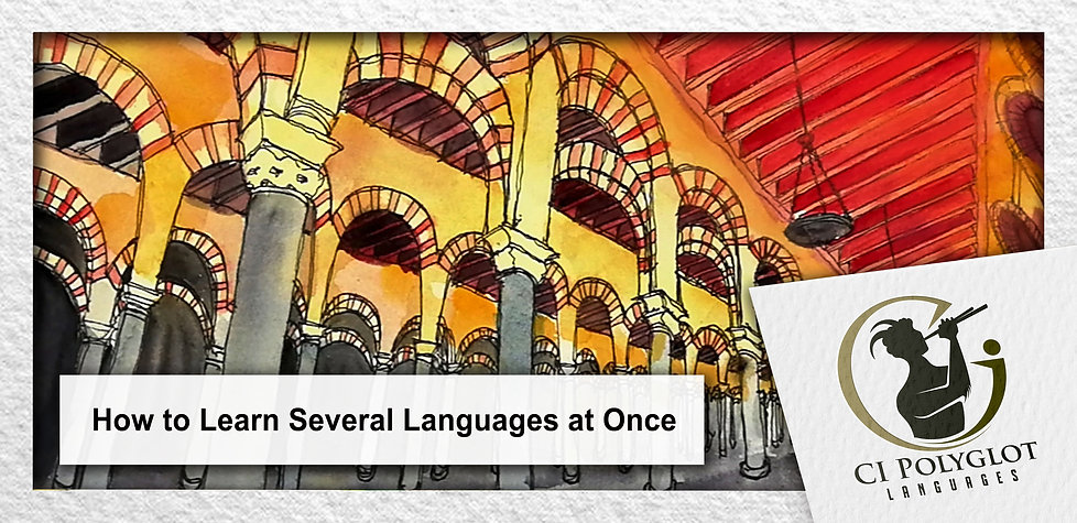 How to Learn Several Languages at Once.j