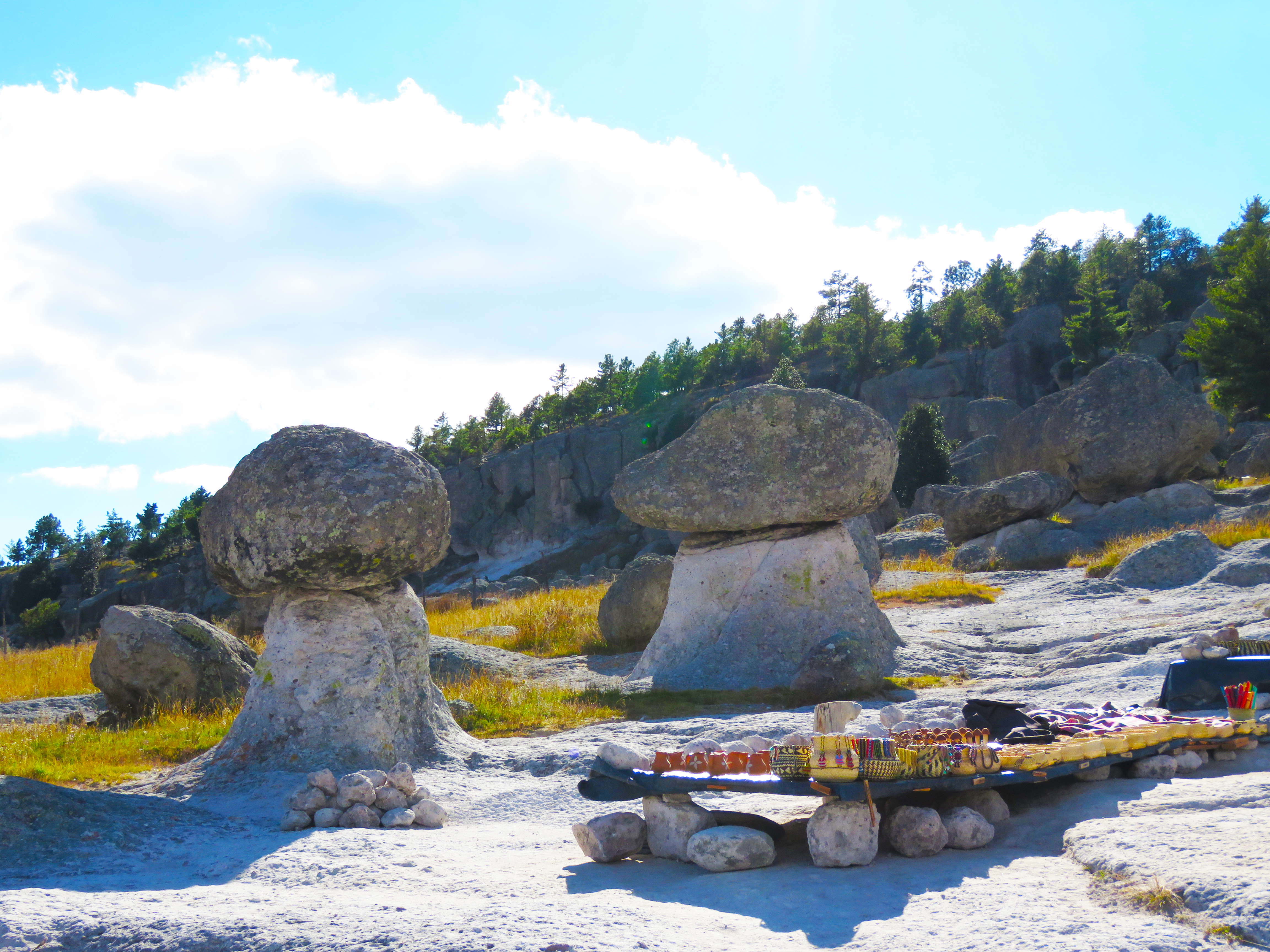 D08 Creel - Valle de los Hongos