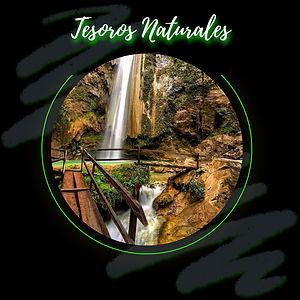 Tesoros Naturales C.jpg