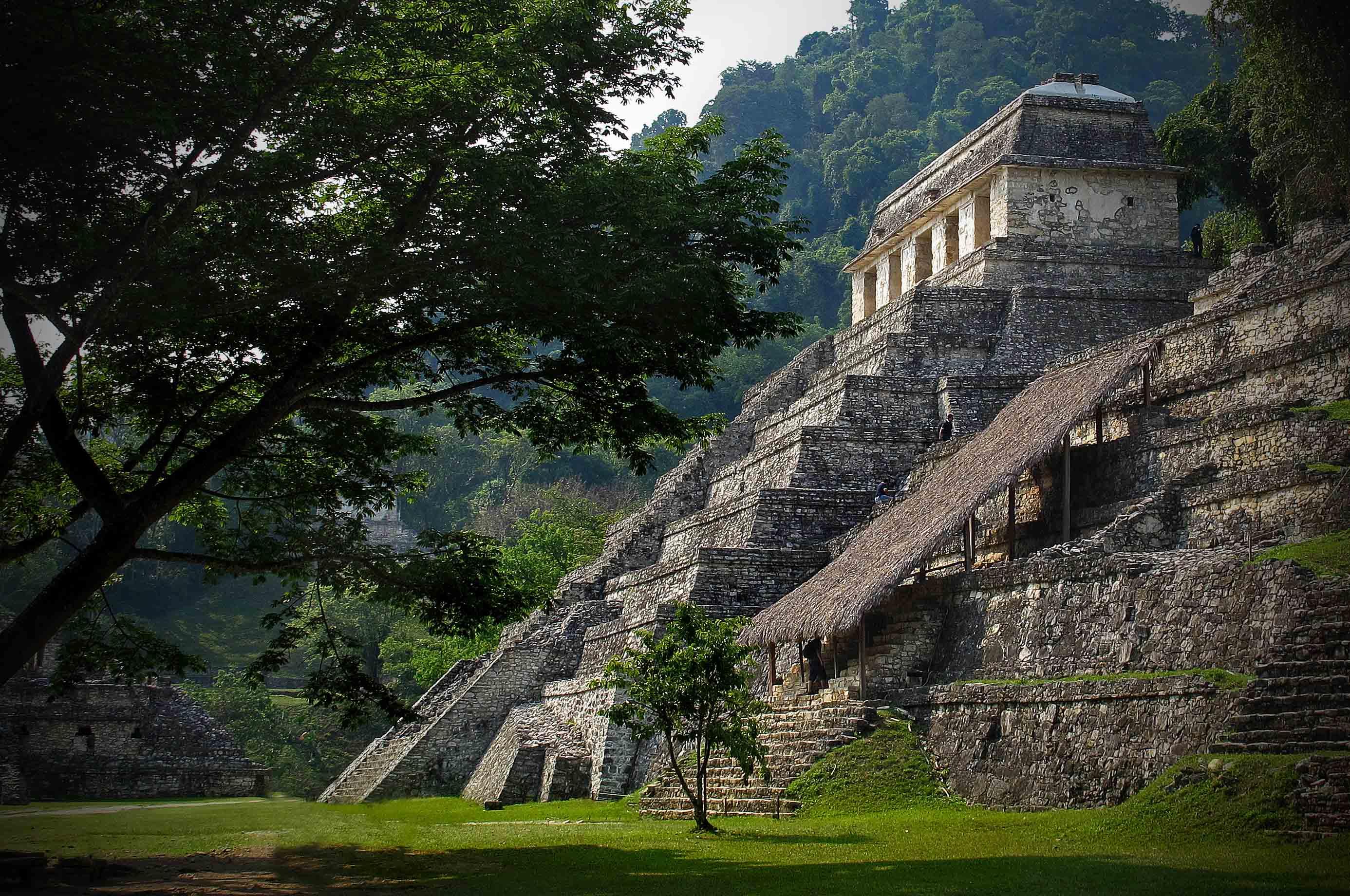 Palenque - Zona Arqueologica 4