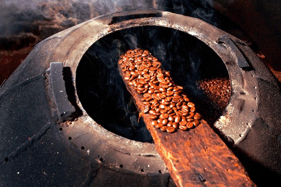 Beneficio de Café