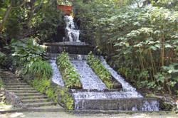 8 Parque-5