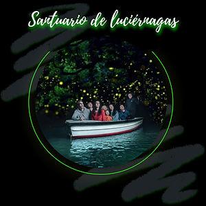 Santuario de luciérnagas C (1).jpg