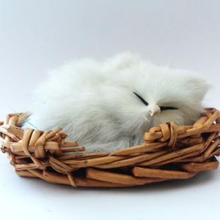 Plastic Cat in Basket