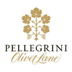 p-olv-pinot-forum-logos