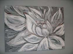 Petals of Grey
