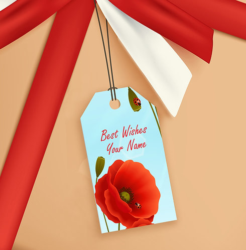Gift Tags (Pack of 20 / 60)  (GT sh 02)