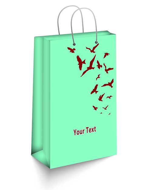 Personalized Paper Gift Bags (SBAG 006)