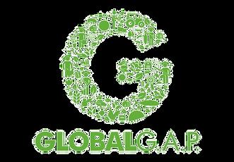 244-2447907_globalgap-farm-assurance-glo