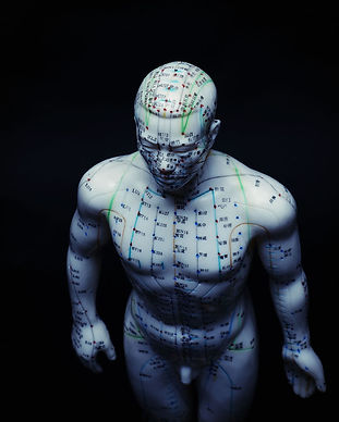 An Acupuncture Model with Meridians and Points