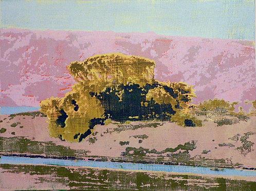 Walker Creek at Tomales Bay by David Covert