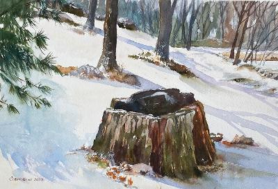 Stump in Winter, Menotomy Rocks Park by Dan Cianfarini