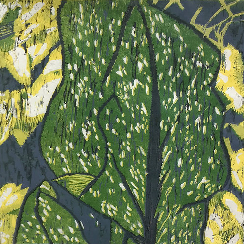 Calla Lily Yellow by Cathy Garnett