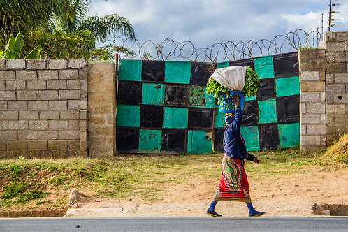 Checkered Gate: Carrying Greens by Betty Stone Photography