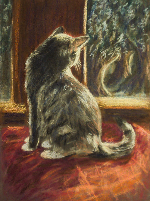 cat in the window by Claire Forrest - Artist