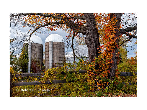 Autumn Silos  by Robert Bicknell Photography