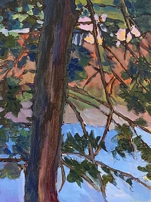 River Edge Spruce by Cathy Garnett