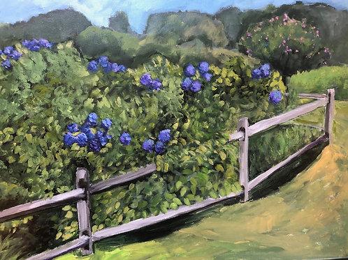 Hydrangeas by J. Pullman Art