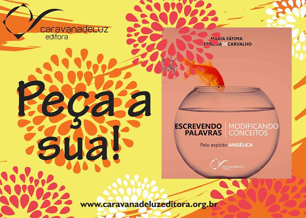 Escrevendo Palavras, Modificando Conceitos - Caravana de Luz Editora