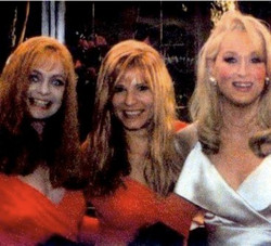 Goldie Hawn, Barbara Klein (Goldie Stunt Double) and Meryl Streep