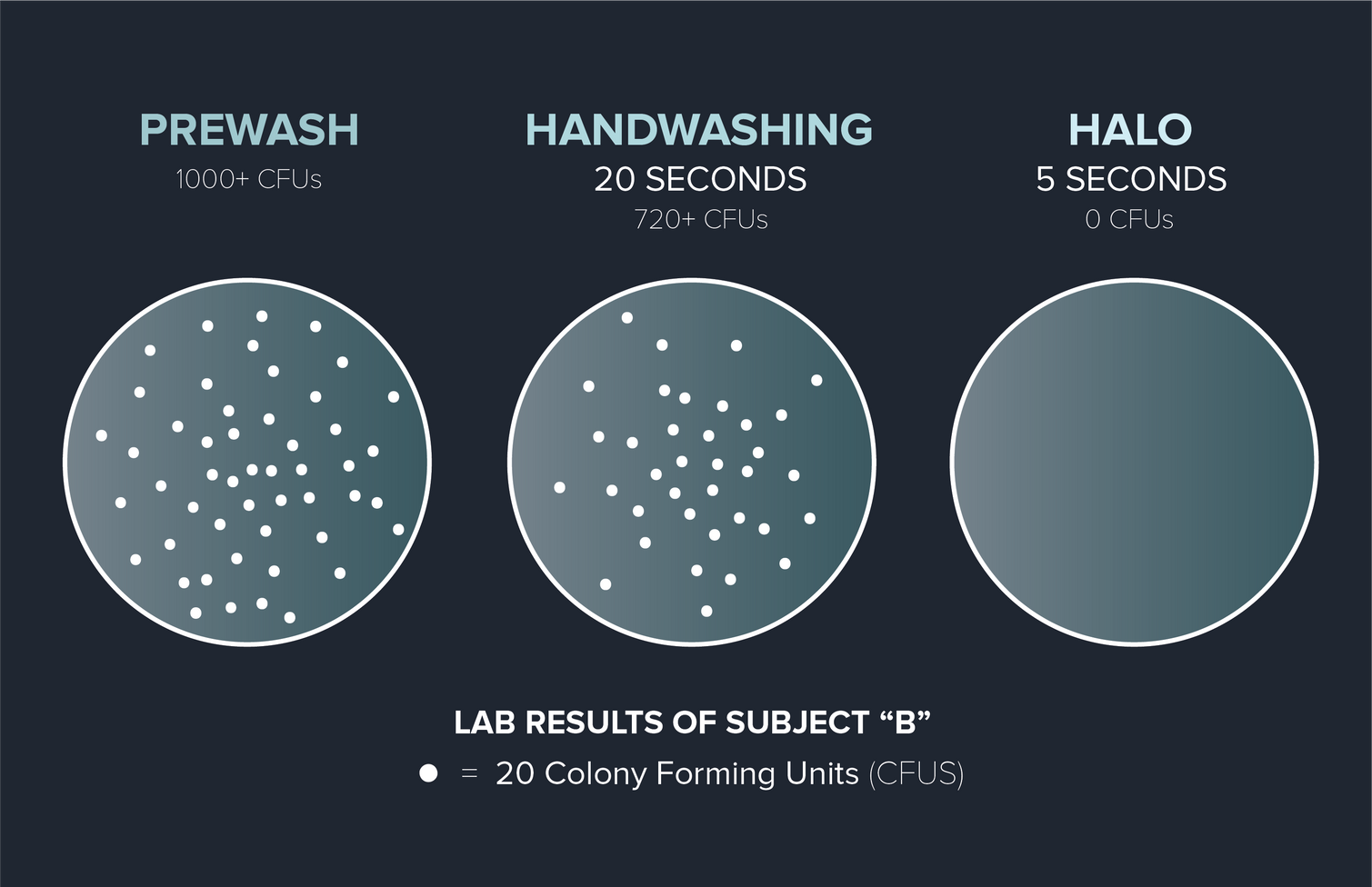 Handwash Pietri.png