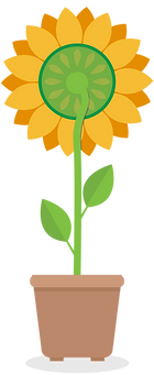 Sunflower Back Light Therapy-03-03.png
