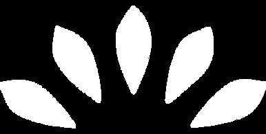1aa white logo full-04.png