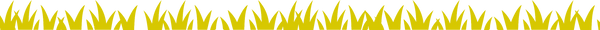 web%20banner_edited.png