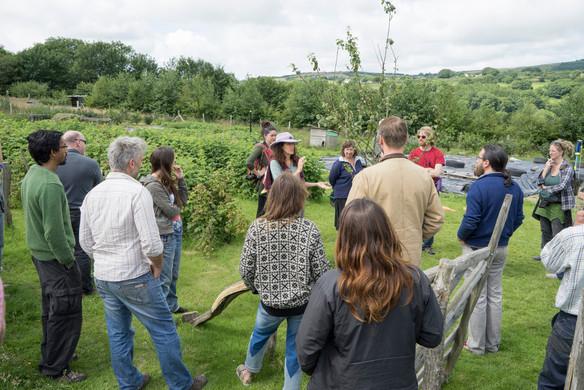 Lammas guided tour