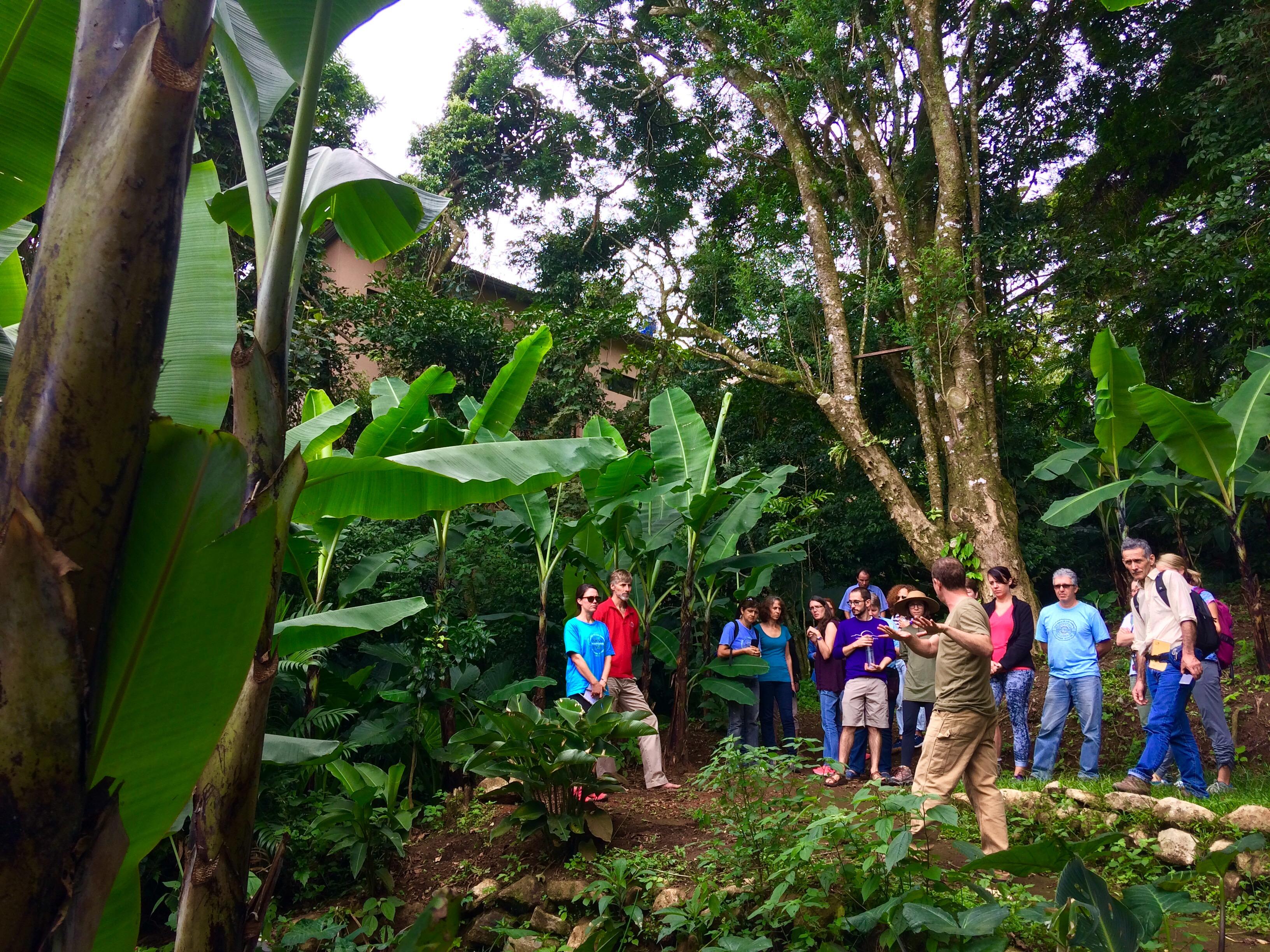 Eco Tour reserva natural Monteverde