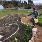 Creating beautiful gardens