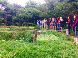 Tour de Sostenibilidad Monteverde
