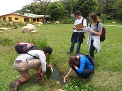 Clase de permacultura Monteverde