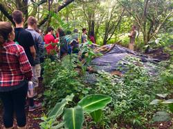 Permaculture Project Tour - Compost