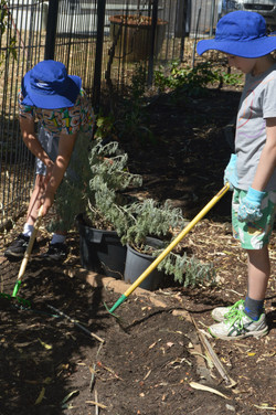 gardening (19)-r47