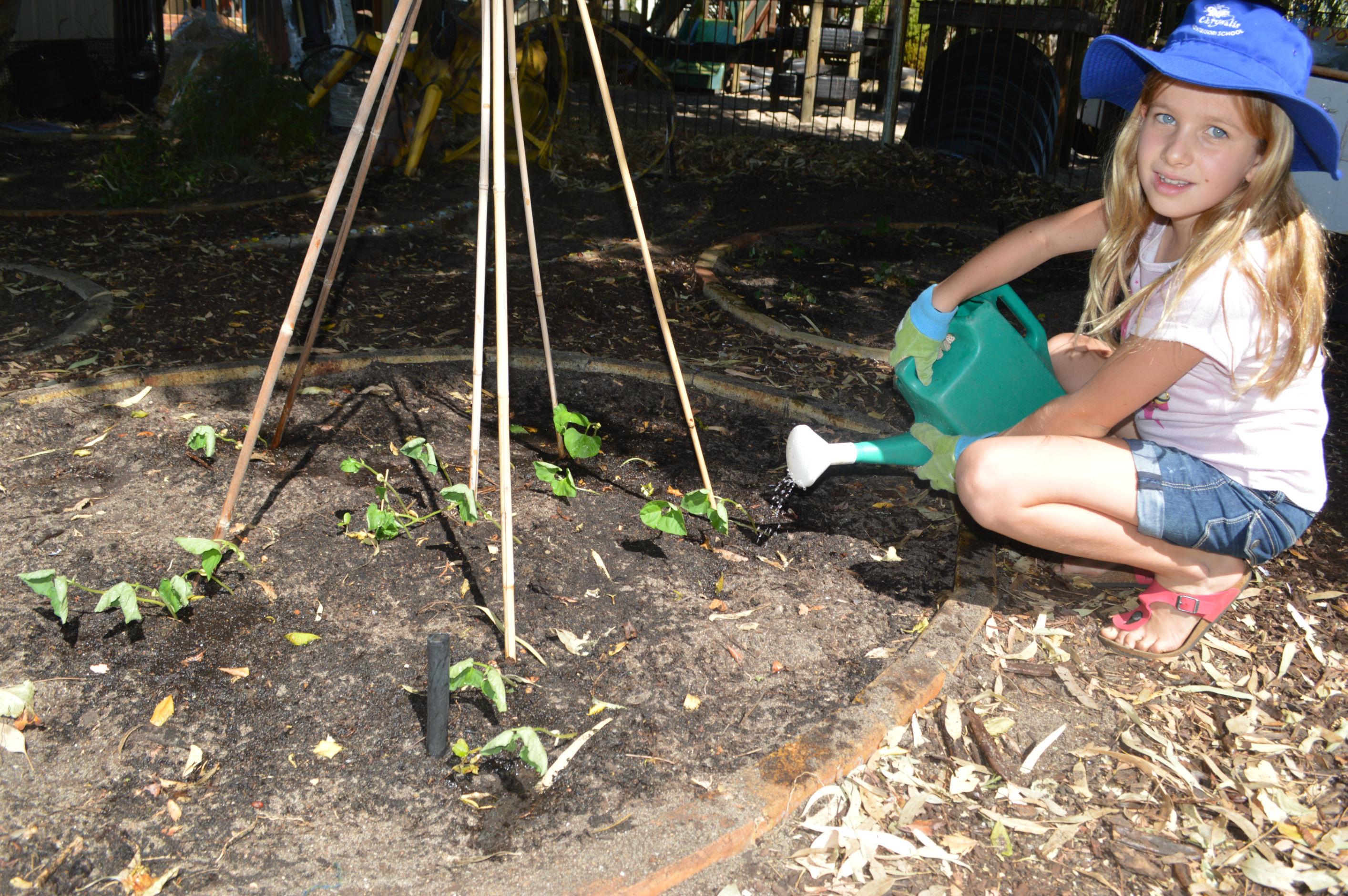 gardening (12)-r47
