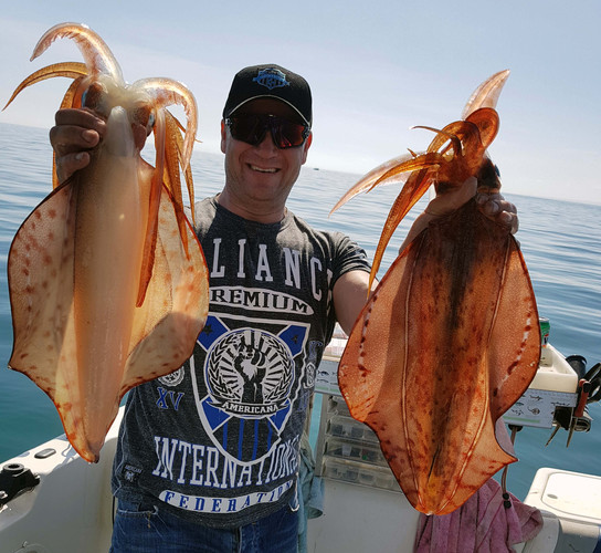 The bay's always good for a couple of Squid