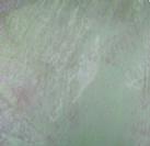 Verdi Green (VG)